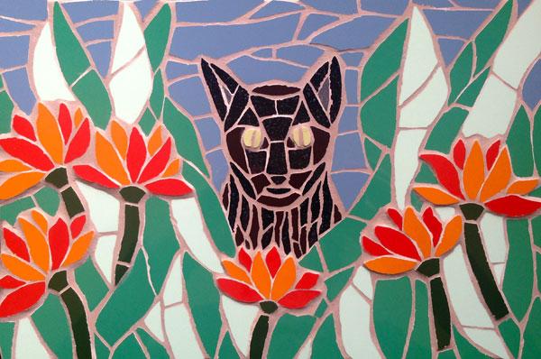Idris, the cat